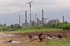 Solubac ambiental - foto 16