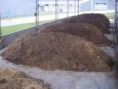 Tratamento de compostagem