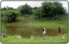 Pesqueiros