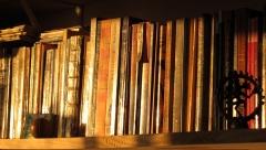 Revisão de textos, livros, trabalhos acadêmicos, monografias, tcc, artigos