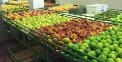 Disk frutas e verduras em curitiba - foto 18