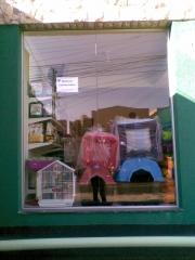 Empório Pet Shop - Foto 4