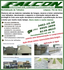 Soluções em limpeza de telhados, calçadas, fachadas,muros,tijolos a vista
