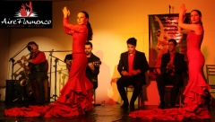 Compañía aire flamenco