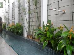 Foto 11  no Tocantins - Jardim Companhia