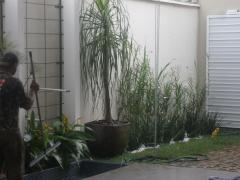 Jardim companhia - foto 3