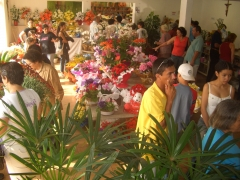 Floricultura Stela Dalwa - Foto 1