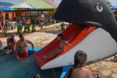 T�tulo gr�tis vale das �guas country club de tupi - foto 9