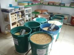 Milho farelo e rações para pintinhos aviário terra fértil