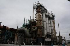Bioplam - consultoria, planejamento e soluções ambientais ltda - me - foto 21