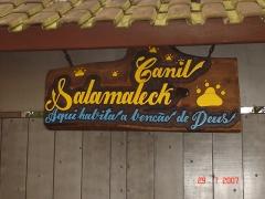 Canil salamaleck - foto 13