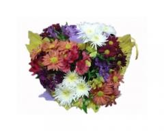 Bouquet pequeno de flor do campo, um ótimo presente para qualquer ocasião.
