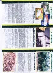 Foto 14 cestas básicas - Kanoa Industrias Alimenticias Ltda