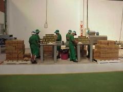 Foto 15 cestas básicas - Kanoa Industrias Alimenticias Ltda