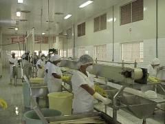 Foto 18 cestas básicas - Kanoa Industrias Alimenticias Ltda