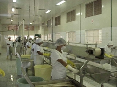 Foto 18 cestas b�sicas - Kanoa Industrias Alimenticias Ltda