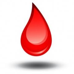 Doe sangue, saiba mais em nosso site www.trullia.com.br