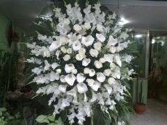 Coroa de flores avalanche