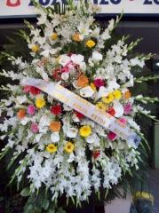 Coroa de flores  roberto bocÃo