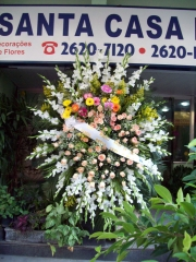 Coroa de flores  roberto noronha