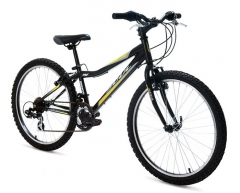 Bicicleta soul iron fox 21v aro 24