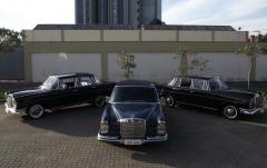 Foto 100 artigos para festas - Elo & Manu Transporte de Noivas