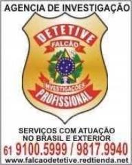 Contatos  do  profissional  responsavel  brasil