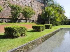Marcelo faisal paisagismo - foto 2