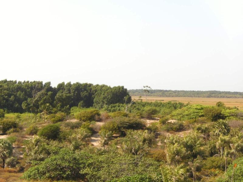 Canárias Ecotur