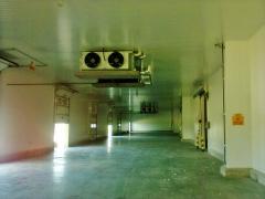 Ademasfrius refrigeração insdustrial - foto 4