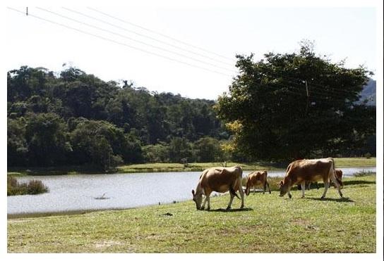 Uirapuru Country Clube