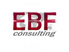 Criação de logomarca EBF Consultoria em São Paulo Capital