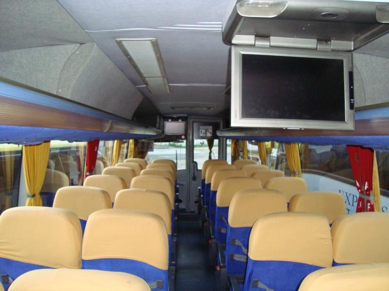 Onibus e microonibus