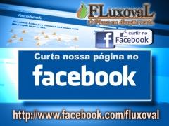 Fluxoval acess�rios hidr�ulicos industriais ltda - foto 3