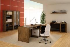 Escrit�rio e home office de alto padr�o