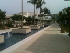 Alameda o2 offices