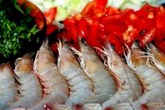 Camarões entre outros frutos do mar