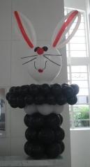 Kero baloes - foto 2