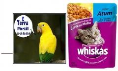 Whiskas no Terra Fértil
