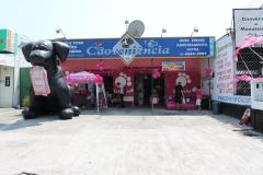 Caoveniência pet shop - foto 1