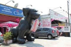 Caoveniência pet shop - foto 21