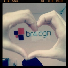 Br4.cgn - foto 9