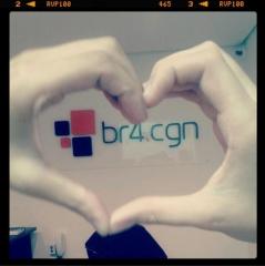 Br4.cgn - foto 1