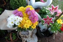 Crisantemo-e lirios