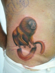 Zeca tribo tattoo bahia