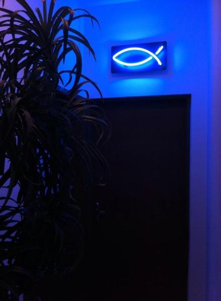 neon peixe