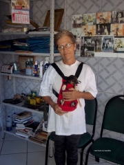 Terrier brasileiro (fox paulistinha) criação - exemplares - filhotes! filhote tricolor de preto em mochila canguru ao colo de denise! filhotes: http://www.canilpguaratiba.com/html/filhotes_tb.html instagram: http://instagram.com/canilpguaratiba facebook: http://pt-br.facebook/canilpedradeguaratiba #canilpedradeguaratibaterrierbrasileiro #canilpedradeguaratibafoxpaulistinha #canilpedradeguaratiba #terrierbrasileiro #foxpaulistinha #terrierbrasileirocanilpedradeguaratiba #foxpaulistinhacanilpedradeguaratiba