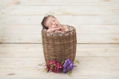 Ensaio newborn (recém-nascido)