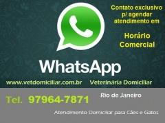 Veterinária domiciliar para cães e gatos - rio de janeiro (21) 97964-7871 ou 99319-8338 - foto 11