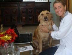 Dra. michelle gandra, veterinária domiciliar no rio de janeiro - tel 97964-7871 (whatsap)